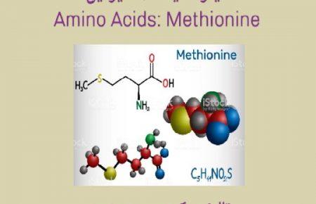 آمینو اسیدمتیونین (حفاظت از کبد)
